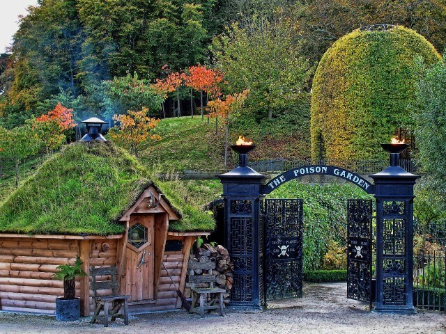 Undated Handout Photo of a Alnwick Garden. See PA Feature GARDENING Gardening Column. Picture credit should read: PA Photo/Margaret Whittaker. WARNING: This picture must only be used to accompany PA Feature GARDENING Gardening Column.