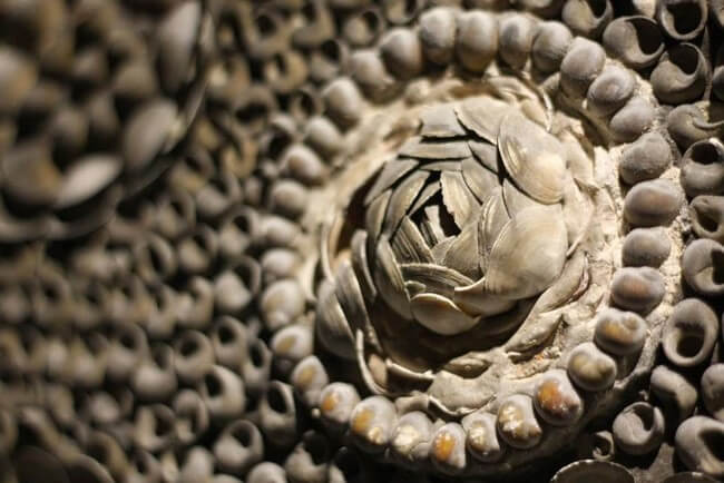 The arrangement of the shells must have taken countless hours of painstaking work.