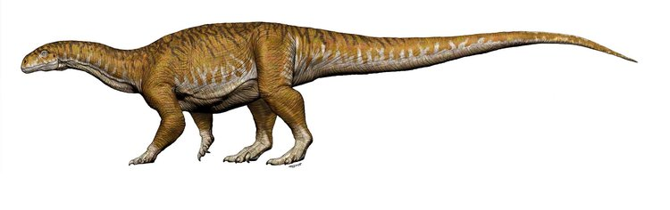 Here's how the Ingentia prima dinosaur may have looked.
